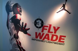 FlyWadeDoor