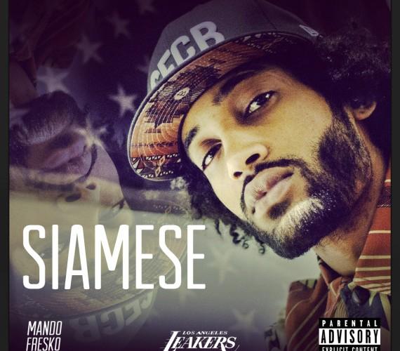 Chase N. Cashe - Siamese